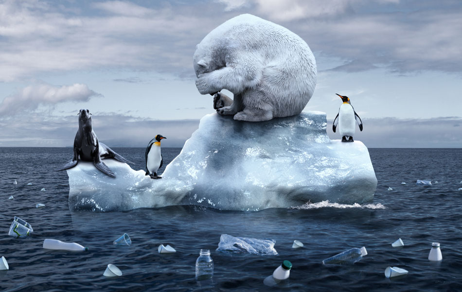 The protection of marine biodiversity